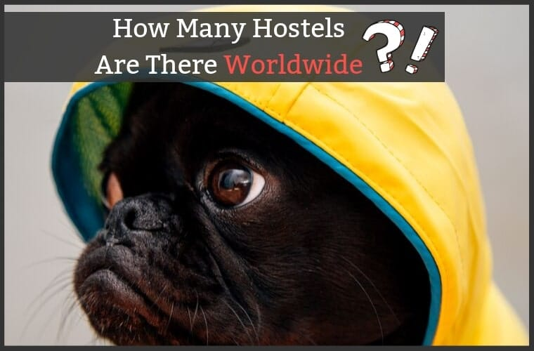 How Many Hostels Are There World Wide?