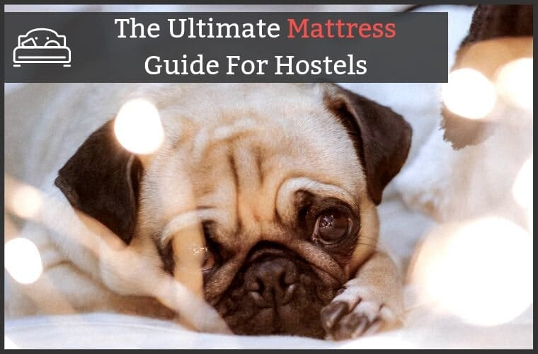 Best Hostel Mattress