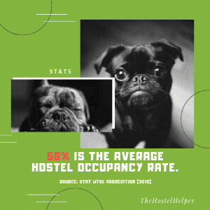 Example of Hostel Social Media Template