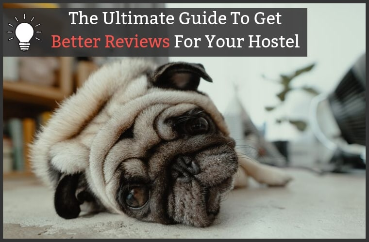 Increase Online Reviews For Hostels