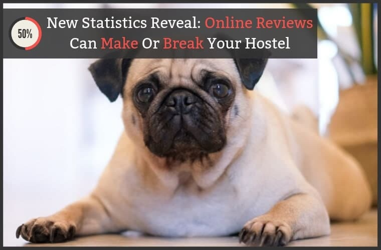 Hostel Online Reviews Statistics