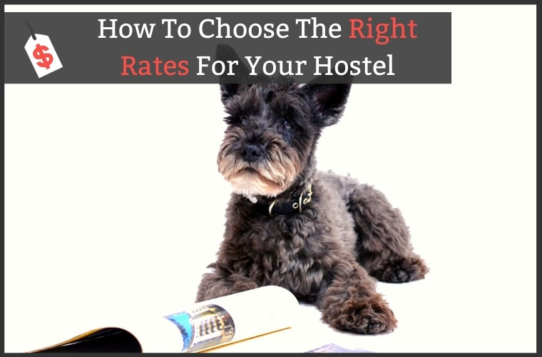 Pricing Strategy Hostels